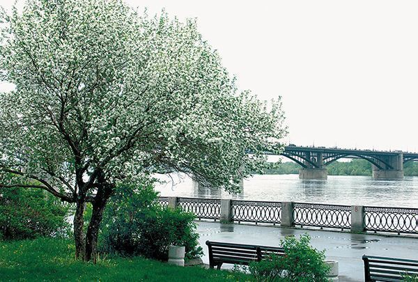 набережная реки обь: